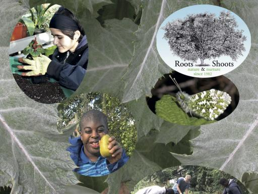 Roots and Shoots: Training young people to fulfil their potential and environmental education for all: Nature and Nurture since 1982.  Images of students Coralie (working in the greenhouse); Henry (on an orchard visit);  horticulture students preparing beds in the Lambeth Walk Open Space.